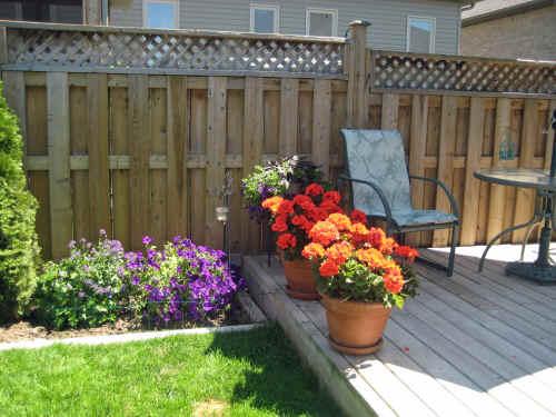 Flowers gardens for My gardener landscaping